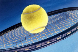 Sosnowiec Atrakcja Szkoła tenisa SOSNOWIECKA SZKOŁA TENISA ZIEMNEGO